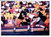 1966 NFL season