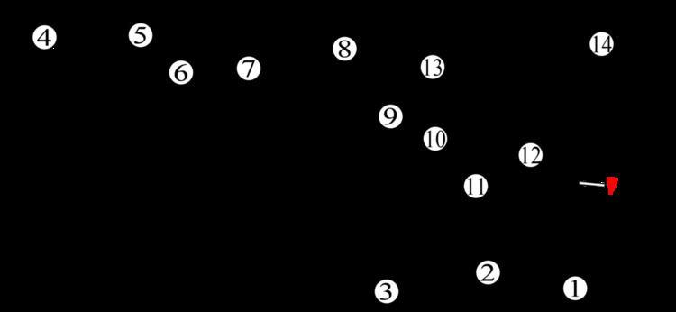 1970 Australian Grand Prix