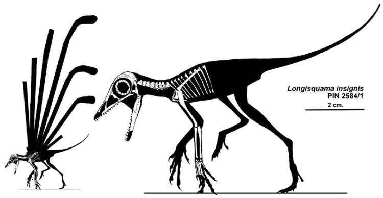 1970 in paleontology