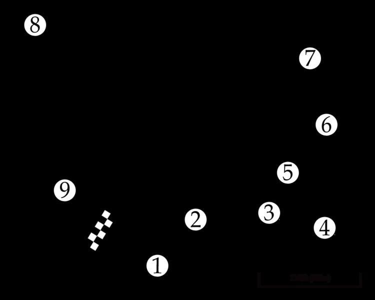 1974 New Zealand Grand Prix