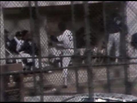 1976 American League Championship Series httpsiytimgcomviLclAq31UvY4hqdefaultjpg