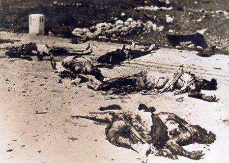 1982 Hama massacre diala on Twitter quotHama massacrefeb 228 1982 siege of the Syrian