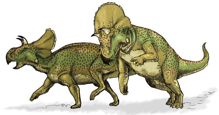1986 in paleontology