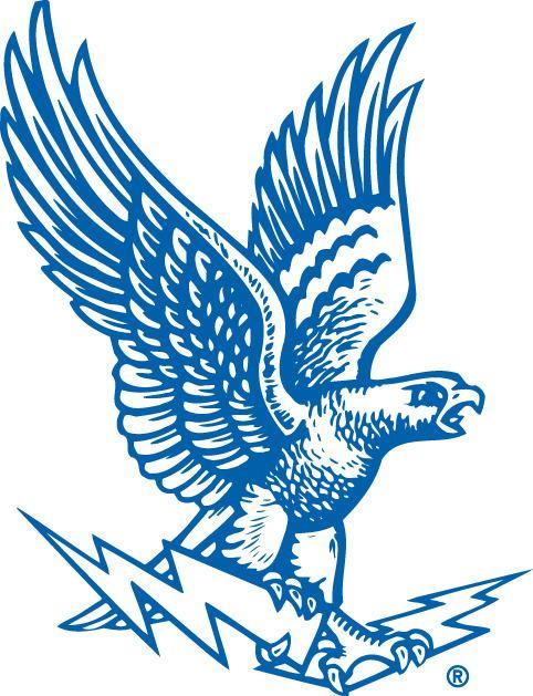 1987 Air Force Falcons football team