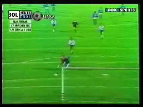 1988 Copa Libertadores httpsiytimgcomvilbA2PUVQACMhqdefaultjpg