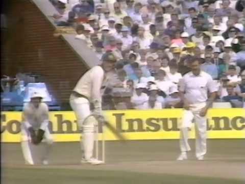 1989 Ashes series httpsiytimgcomviwmv2jBAGaxkhqdefaultjpg