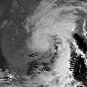 1995 India cyclone