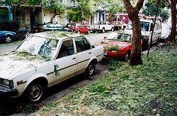 1999 Sydney hailstorm httpsuploadwikimediaorgwikipediacommonsthu
