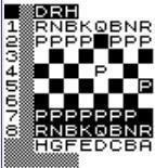 1K ZX Chess httpschessprogrammingwikispacescomfileview