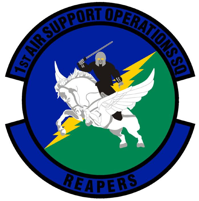 1st Air Support Operations Squadron
