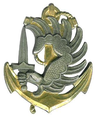 1st Marine Infantry Parachute Regiment