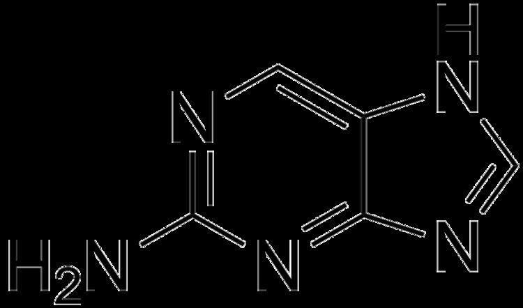 2-Aminopurine File2Aminopurinepng Wikimedia Commons