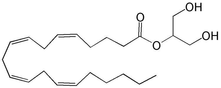2-Arachidonoylglycerol 2Arachidonoylglycerol 2AG Doctor Hemp