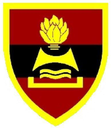 2 Field Engineer Regiment (South Africa)
