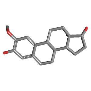 2-Methoxyestradiol 2Methoxyestradiol C19H26O3 PubChem