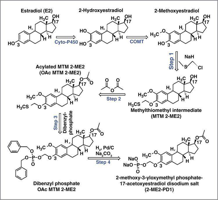 2-Methoxyestradiol A SecondGeneration 2Methoxyestradiol Prodrug Is Effective against