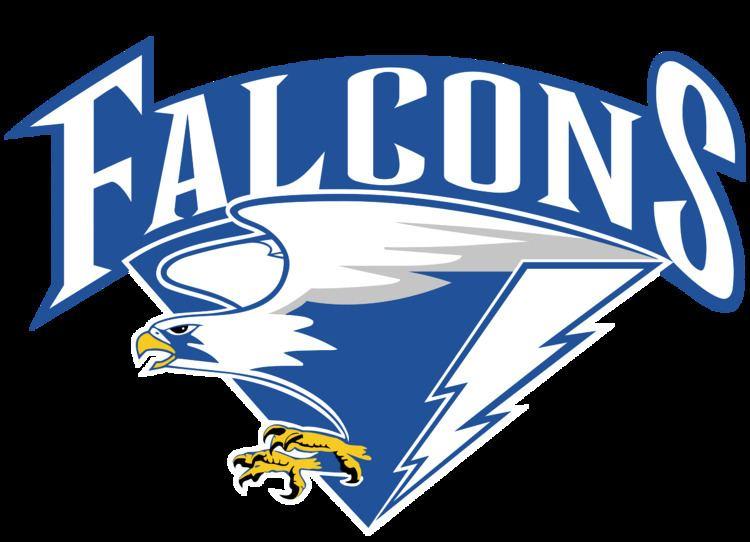 2000 Air Force Falcons football team