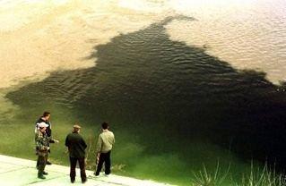 2000 Baia Mare cyanide spill Baia mare cyanide spill on emaze