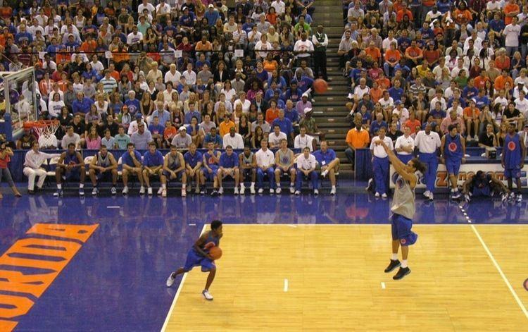 2006–07 Florida Gators men's basketball team