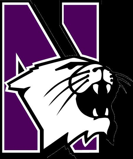2008 Northwestern Wildcats football team