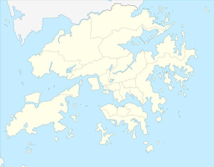2008–09 Hong Kong First Division League
