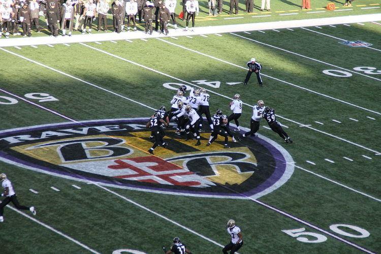 2010 Baltimore Ravens season
