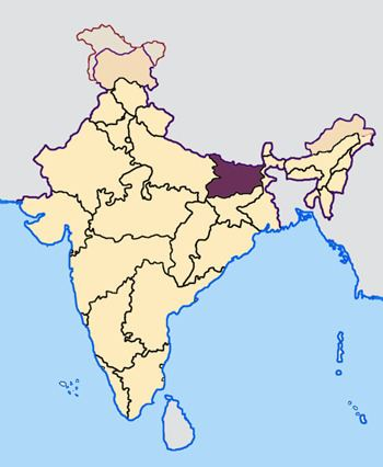 2010 elections in India