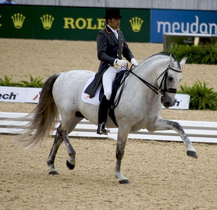 2010 FEI World Equestrian Games