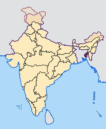 2013 elections in India