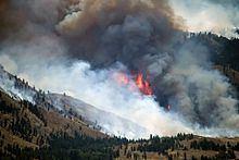2014 Washington wildfires httpsuploadwikimediaorgwikipediacommonsthu