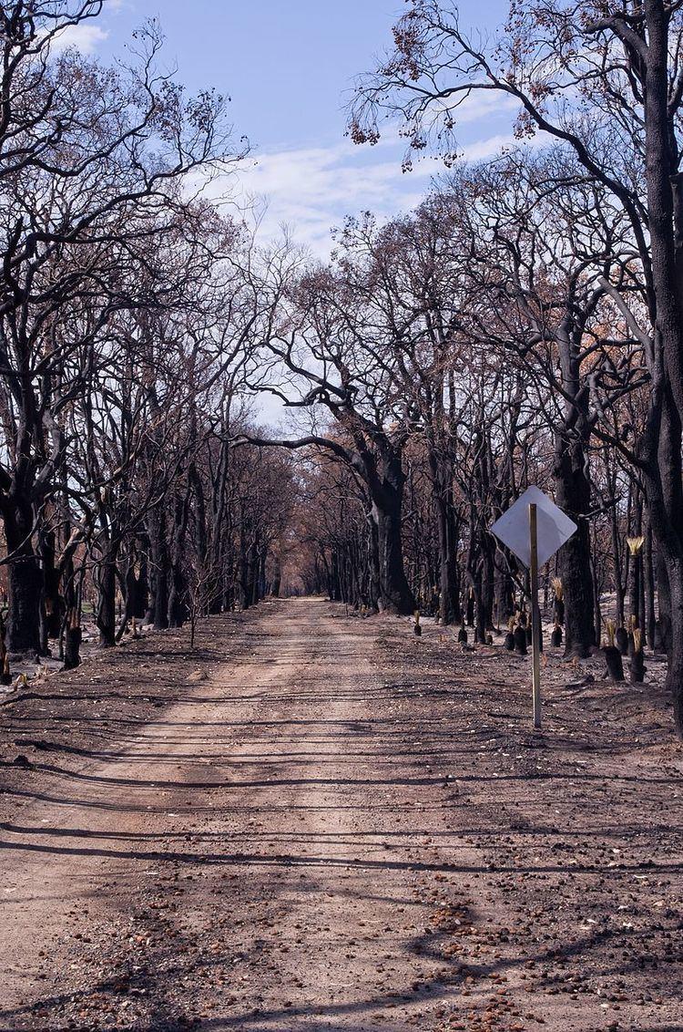 2015–16 Australian bushfire season