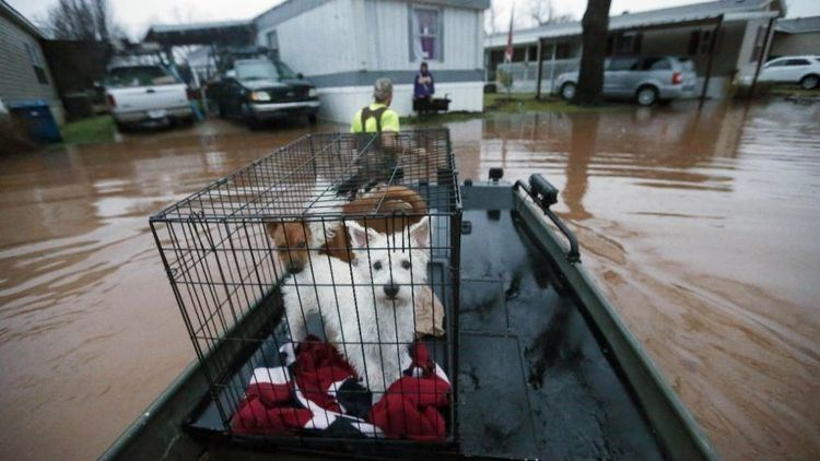 2016 Louisiana floods Flooding forces more than 1000 from homes in Louisiana Fox News