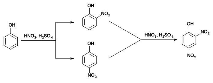 2,4-Dinitrophenol FileSynthesis 24Dinitrophenolsvg Wikimedia Commons