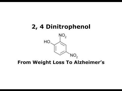 2,4-Dinitrophenol 2 4 Dinitrophenol From Weight Loss to Alzheimer39s YouTube