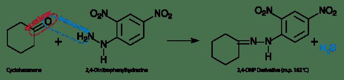2,4-Dinitrophenylhydrazine Lab Photo The 24Dinitrophenylhydrazine Test for Aldehydes and