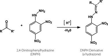 2,4-Dinitrophenylhydrazine organic chemistry Why doesn39t the Brady39s test 24DNPH work on