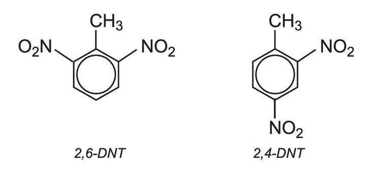 2,4-Dinitrotoluene Polyurethanes