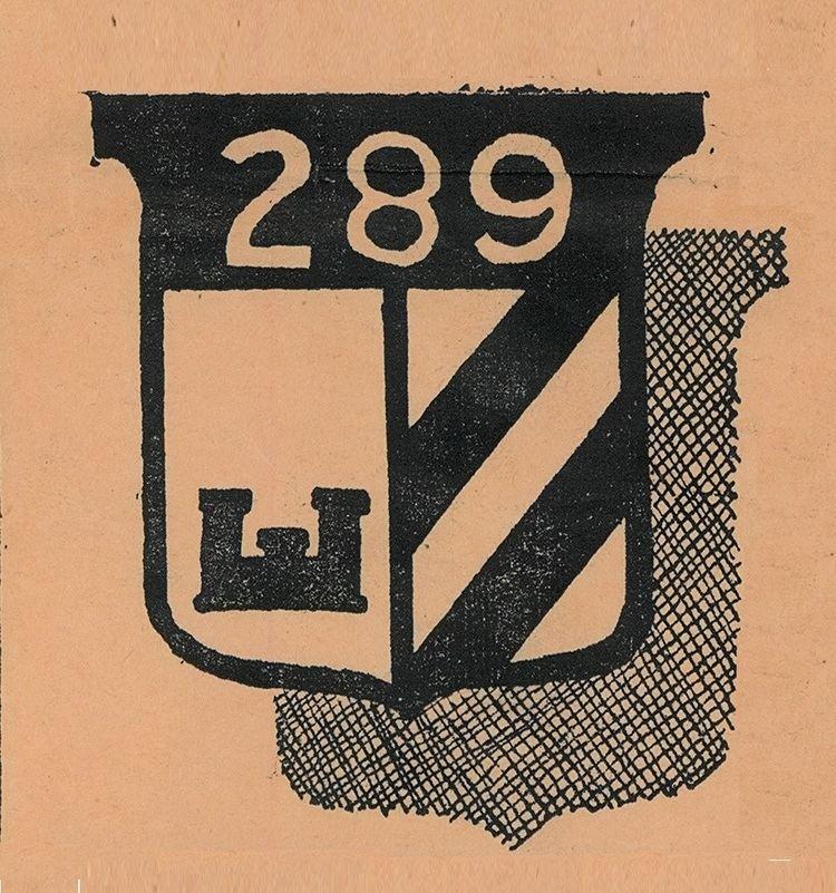 289th Engineer Combat Battalion (United States)