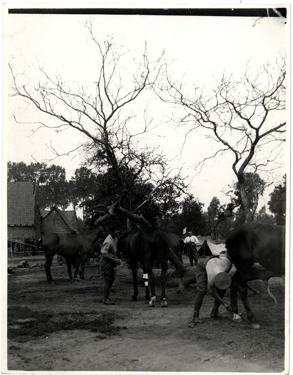 2nd Indian Cavalry Division