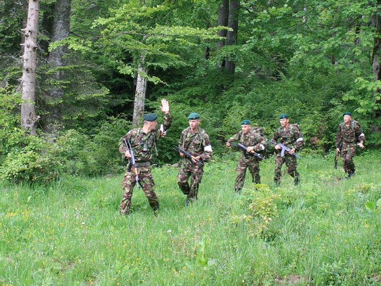 2nd Mountain Troops Brigade (Romania)