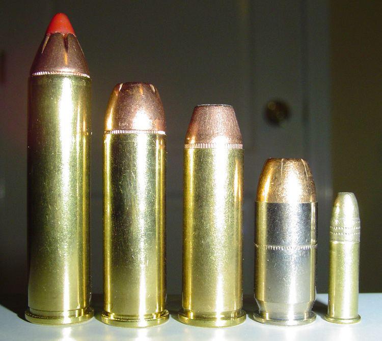 .460 S&W Magnum