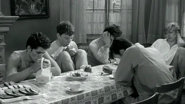 491 (film) movie scenes