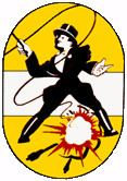491st Bombardment Group