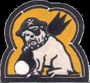 494th Bombardment Squadron