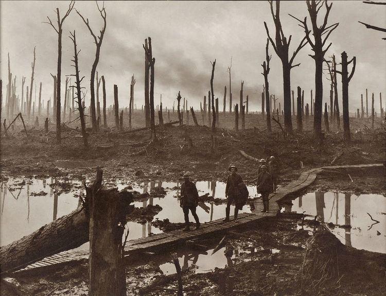 4th Division (Australia)