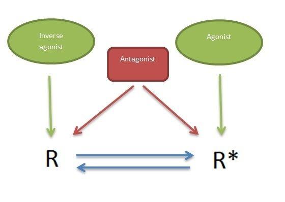 5-HT2c receptor agonist