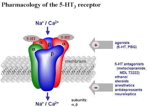 5-HT3 receptor Molecular Psychiatry Antipsychotic drugs antagonise human