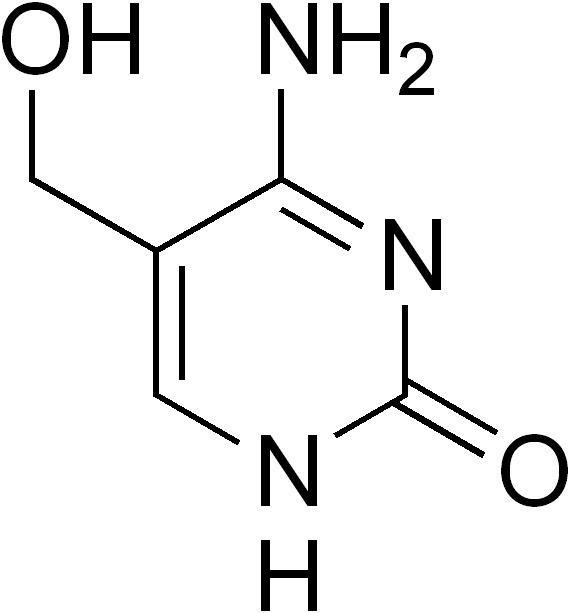 5-Hydroxymethylcytosine 5Hydroxymethylcytosine Wikipedia