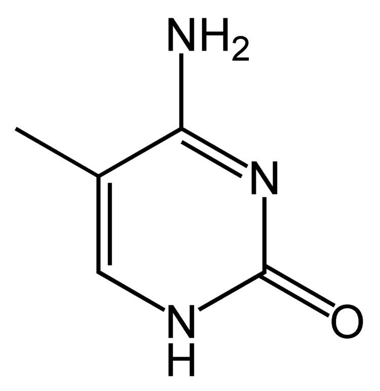 5-Methylcytosine File5methylcytosinepng Wikimedia Commons