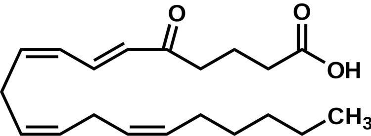 5-oxo-eicosatetraenoic acid